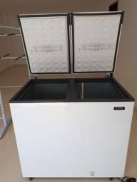 Freezer esmaltec EFH 350 2 portas  com 305 litros