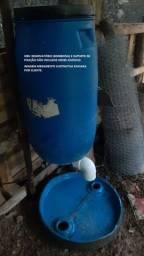 Alimentador Automático para Galinhas