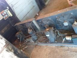 2 Compressores Elgin CR42K6MPFV - 220V 60Hz