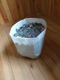 60 kg de moedas aço inox