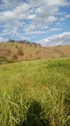 Vendo terra
