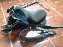 Cela de cavalo R$ 300