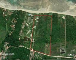 Espetacular área loteada com 13.000 m² na 4ª praia de Morro de São Paulo