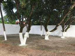 Alugo otimo terreno na Barra Nova