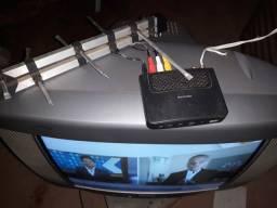 TV 21 polegadas conversor digital e antena