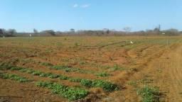 Fazenda com 652 hectares na região de parazinho de eólica