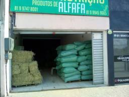 ALFAFA! Feno, Triturada, Pets. Produtos de Alfafa!
