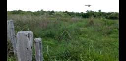 Fazenda em Santa Fe Tocantins arrendo