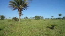 Fazenda em Juara MT 370 Hectares Escriturada