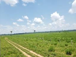 3.400 hectares Alta Floresta-Mt