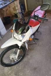 Honda POP 110 2019