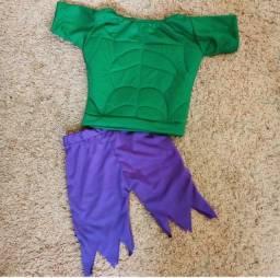 Fantasia Hulk 70,00