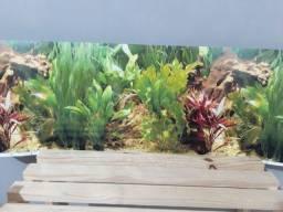 Painel para fundo de aquário lindo