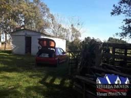 Velleda oferece sítio 4 hectares, duas casas simples, galpão e açude