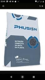 Adubo Phusion