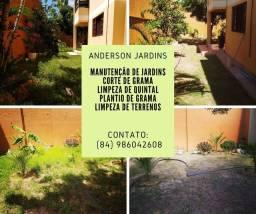 Jardineiro - manutenção de jardins