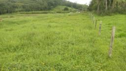 Terreno de 5.000 m² em Ribeirão da lagoa, valor 155.000,00
