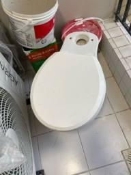 Assento sanitário celite