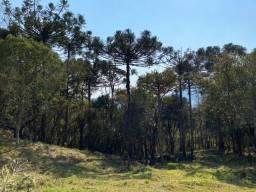 Título do anúncio: Terreno de 2 hectares em Urubici