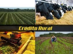 Crédito Agrícola e Pecuário