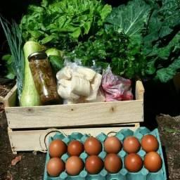 Delivery de alimentos orgânicos