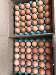 Ovos vermelhos 115,00 a caixa