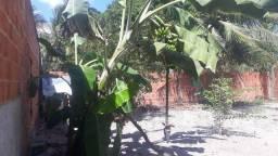 Casa de picina em Paracuru