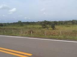 Sitio Careiro Castanho