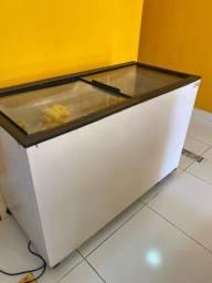 Freezer horizontal 2 portas de vidro