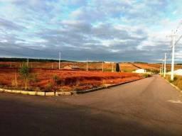Terreno, Gralha azul - Fazenda Rio Grande - Esquina - 220m2 - Green Portugal 1