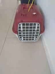 Casinha de Gato para viagem