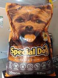 Special dog sênior
