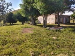 Velleda oferece fazenda 52 hectares aproveita 75%, rica em água escriturada