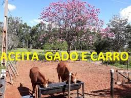 Linda chácara próxima à UCDB e ao Clube do Laço Aceita Gado e Carro