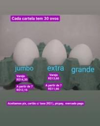 Título do anúncio: Distribuidora de ovos em Goiânia