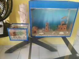 1 aquario 50 litros mais 2 beteira e os Enfeite tudo por 100 reais