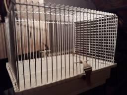 Título do anúncio: gaiola para hamster pequena v 50,00