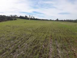 Vende-se uma terra para agricultura