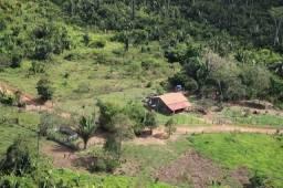 Fazenda no município de anapu -PA beira do rio Xingu