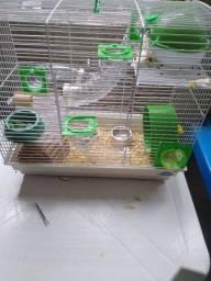 Gaiola com hamster,e uma menina tem 4 meses