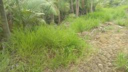 Terreno de 4.000 m² em Massaranduba, valor 115.000,00