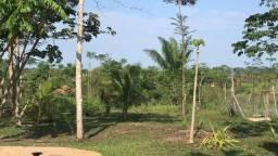 Ramal do muntum 16 km de Rio Branco