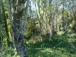 Vendo um terreno em rolante perto do Centro fica cinco quilômetros