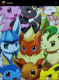 Placa pokémon 13x9
