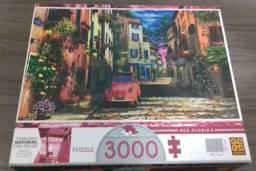 Quebra-cabeça Grow Vila Florida 3.000 peças