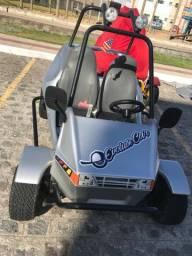 Mini carro a gasolina show