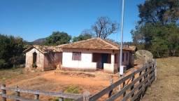 Fazenda com 63 hectares