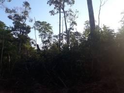 Vendo 10 alqueires em mata no distrito de Guaporé entrada pra chupiguaia
