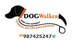 Dog walker passeador de caes