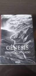 Gênesis Sebastião salgado